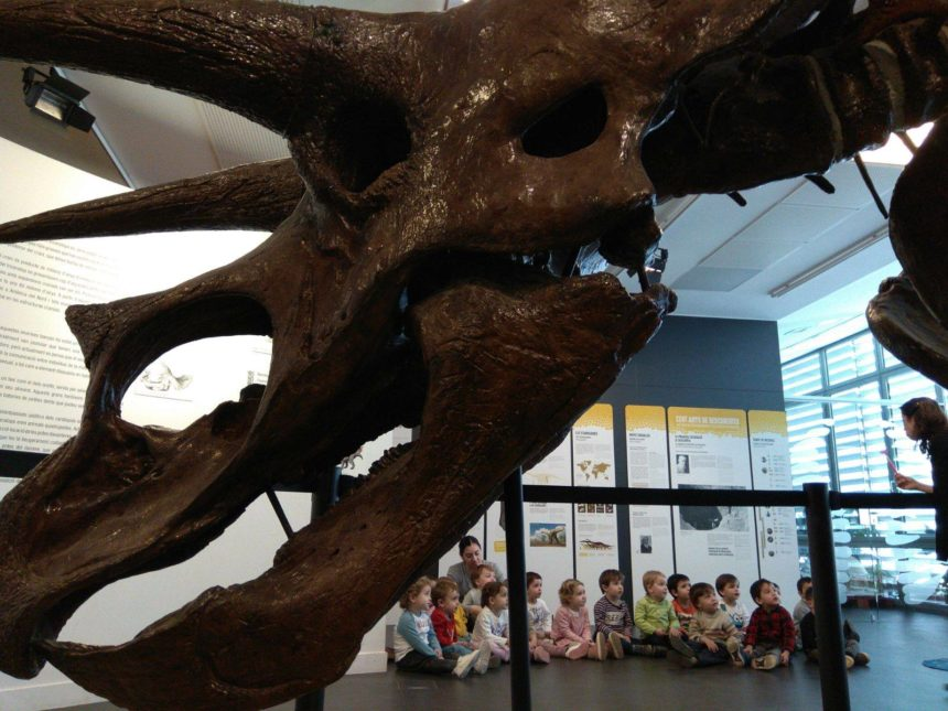 Quin món tan fantàstic el dels dinosaures!
